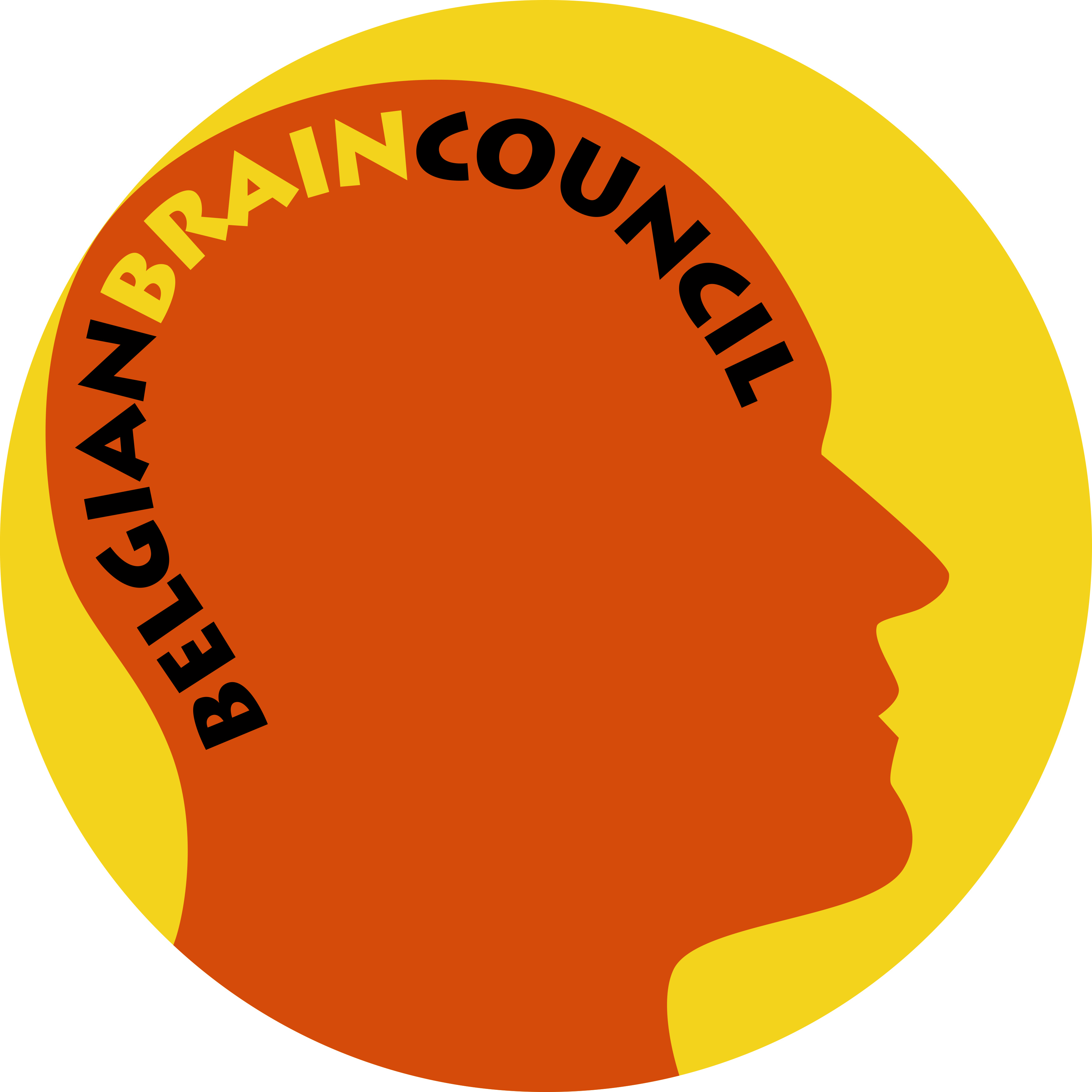 Belgian Brain Council